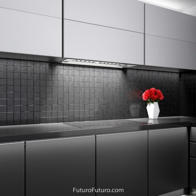 Contemporary kitchen exhaust hood | Stylish under cabinet kitchen hood